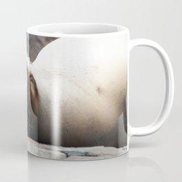It Is So Tiring Being So Cute Coffee Mug