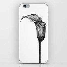 Zantedeschia Flower iPhone Skin