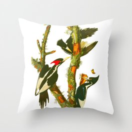 Ivory-billed Woodpecker Throw Pillow