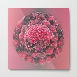 RaspBERRYSomething Metal Print