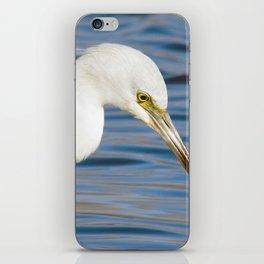 Baby Blue Heron iPhone Skin