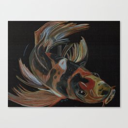 Koi fish on black Canvas Print