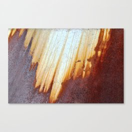 Rain Rusted Roof Canvas Print