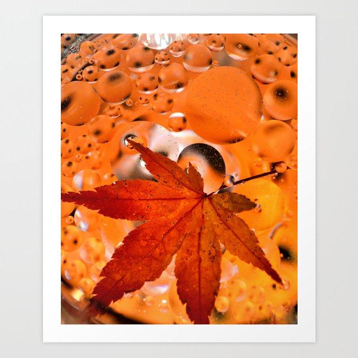 Maple Leave Art Print