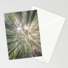 Summer light, Otways Australia Stationery Cards
