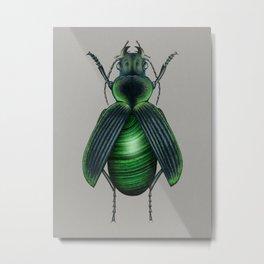 Malachite Beetle Metal Print