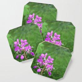 Fireweed Wildflower Coaster