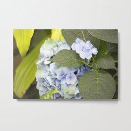 Longwood Gardens - Spring Series 256 Metal Print