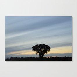 Striped prairie sky... Canvas Print