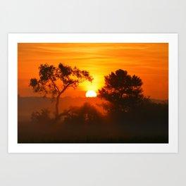 """Foggy Summer Morning Art Print"