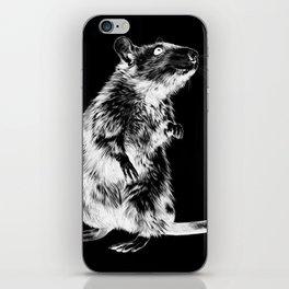 Rat | Spirit animal | Year of the rat | Wicca | Rat lovers | Rat Club iPhone Skin