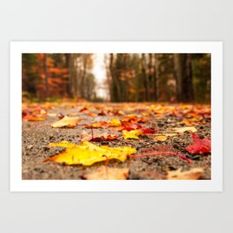 Fall on the Road Art Print
