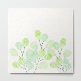 Jade Plant Watercolor Metal Print