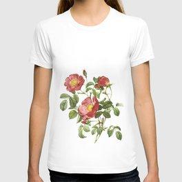 Vintage Red Roses [06] T-shirt