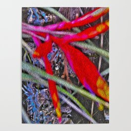 Bromeliad in the Cathedral Poster