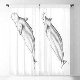 Beluga Blackout Curtain