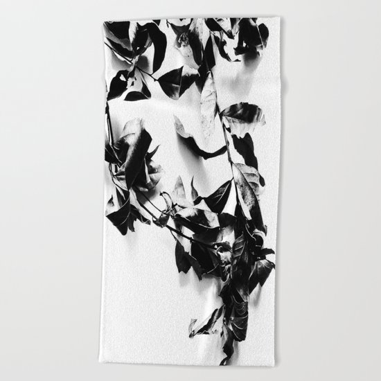 Bay leaves 4 Beach Towel