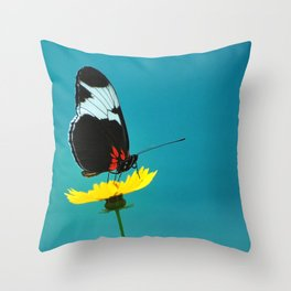 butterfly on yellow flower blue background Throw Pillow