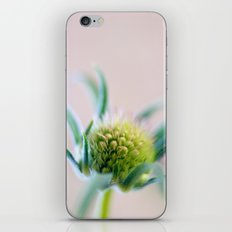 Green Points iPhone & iPod Skin