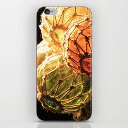 Nautical Glass Buoys iPhone Skin