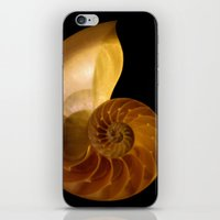 shell iPhone & iPod Skins featuring shell by littlesilversparks