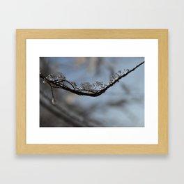 Winter Frozen Framed Art Print
