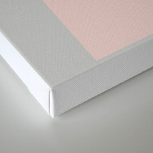 Compression Canvas Print