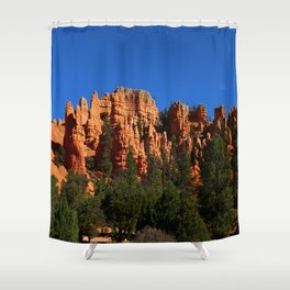 Dixie Forest Hoodoos Shower Curtain