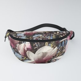 Pink Magnolia Blossoms in Tree Fanny Pack