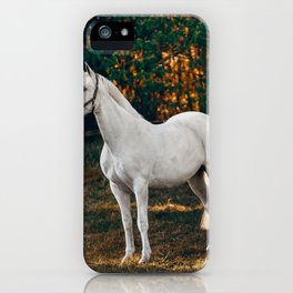 horse by Helena Lopes iPhone Case