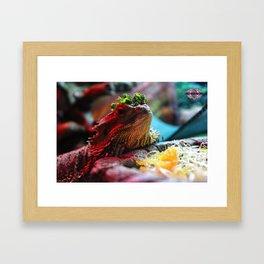Xul Framed Art Print
