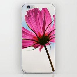 Pink Cosmos iPhone Skin