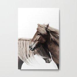 Horses Print Metal Print
