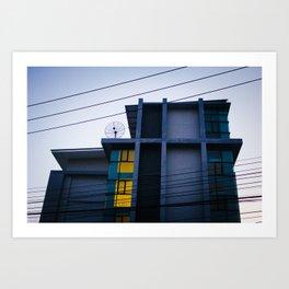 insulated Art Print