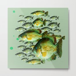 GREENISH  SEA BASS FISHING GRAPHIC Metal Print