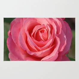 'Cherish' Rose Rug