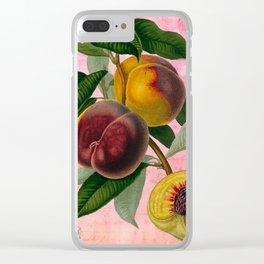 Vintage Botanical Collage, Bradford Peach Clear iPhone Case