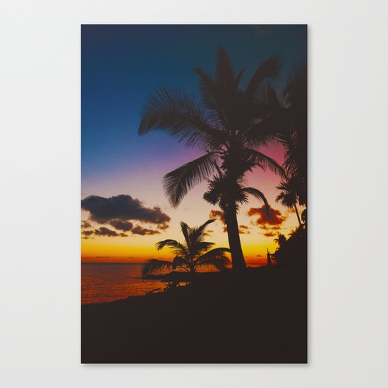 Palm Spring Canvas Print