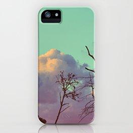223 | bastrop state park iPhone Case