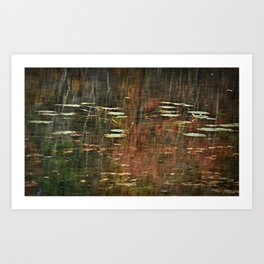 Pond Pads In The Trees Art Print
