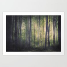 In the woods of Mournton Combs Art Print