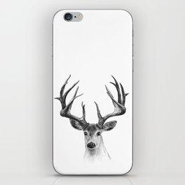Red deer iPhone Skin