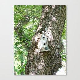Crooked Birdhouse Crooked Tree Canvas Print