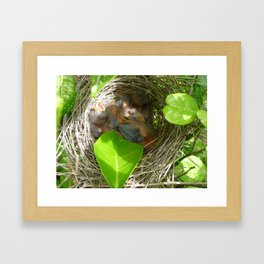 Secret Nest Framed Art Print