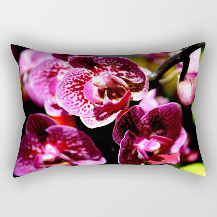 Orchids Rectangular Pillow