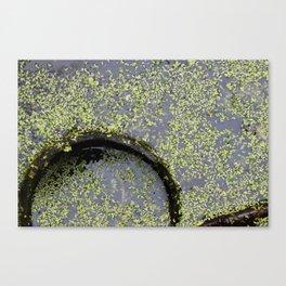 pond(er)ing Canvas Print
