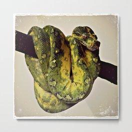 Green Tree Python 2 Metal Print