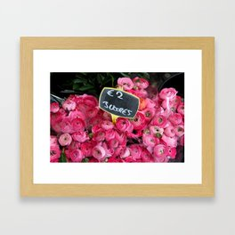 Pink Ranunculus for Sale Framed Art Print