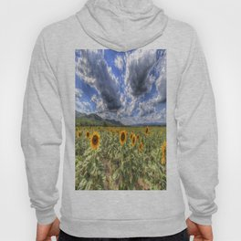 Sunflower Summer Field Hoody