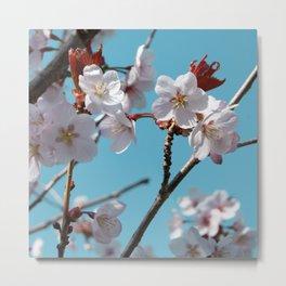Blossom Floral Metal Print